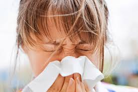 Parlagfű allergia